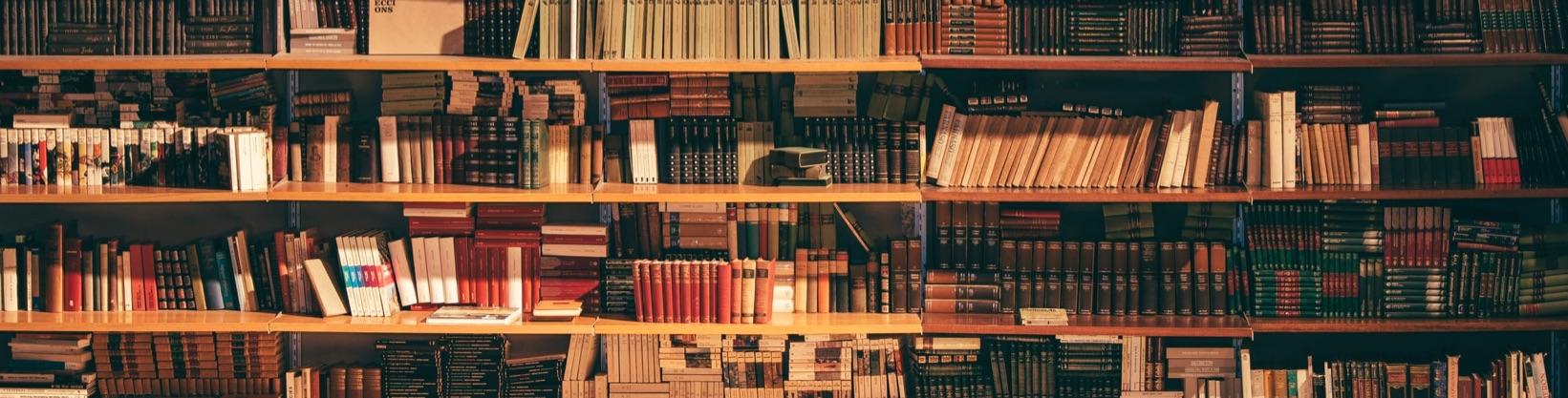ALI – Confcommercio – Osservatorio sulle librerie in Italiane realizzato con Format Research.